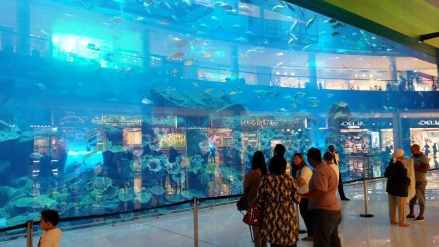 Name:  2016-dubai mall-06.jpg Views: 5877 Size:  42.1 KB